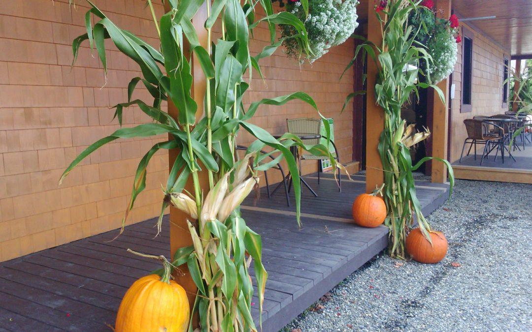 7 activités pour profiter de l'Halloween